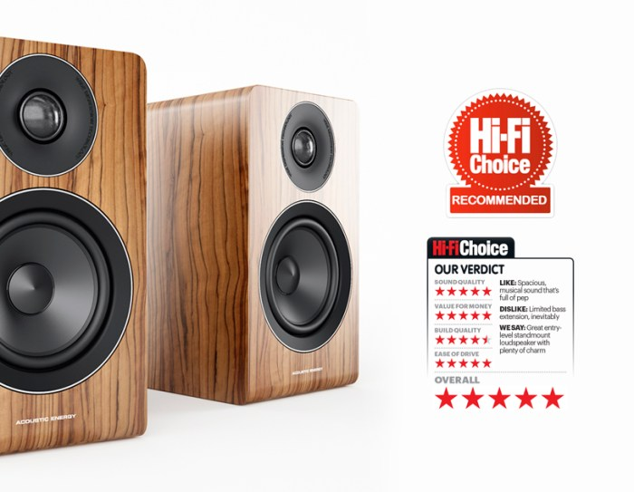 Acoustic energy-AE100-Review-Image