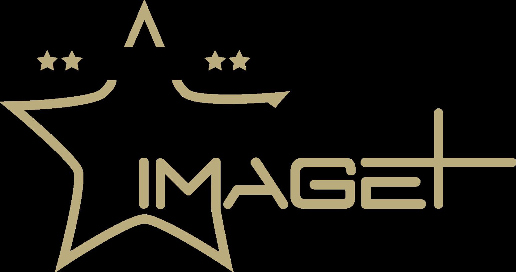 AwardsLogo2017-Winner